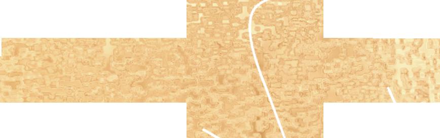 StarMagi